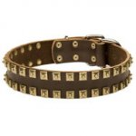 "Fashion Dog Collar Leather with ""Caterpillar"" Style Brass Studs"