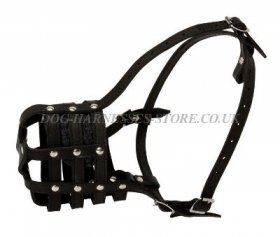 Bestseller! Leather Muzzle for Doberman Walking and Training