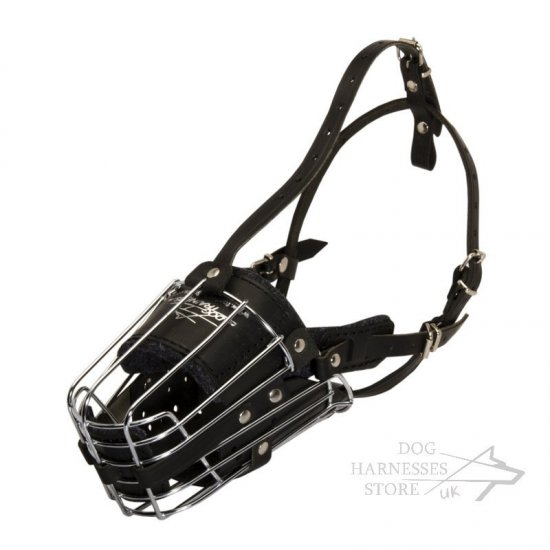 Long Nose Dog Muzzle with Leather Padding for Training and Walks