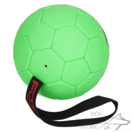 Green Ball Dog Toy with Handle for Medium Breeds