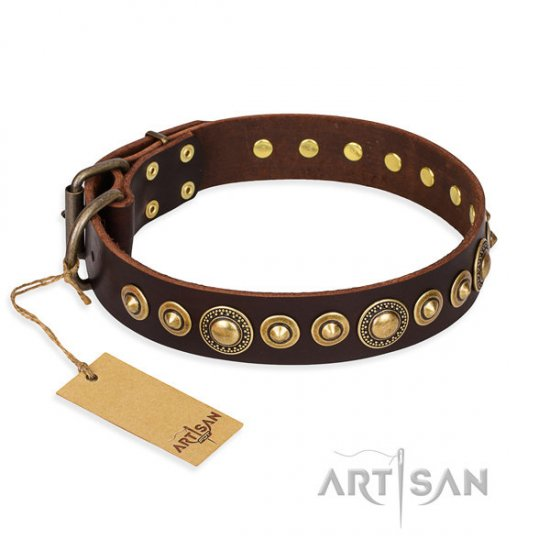 "Brown Leather Dog Collar FDT Artisan, ""Ancient Warrior"" - Click Image to Close"