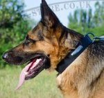 Dog Collar Name Plate for German Shepherd, Natural Leather