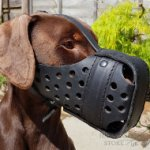 Dog Muzzle for Doberman Pinscher Agitation Training of Leather