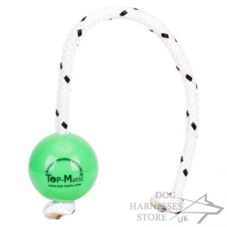 Top-Matic Fun Ball Mini for Small Breeds and Young Dogs