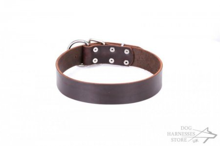 "Brown Leather Dog Collar ""Calm Walk"" FDT Artisan"