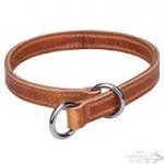 Leather Slip Collar for Dog Obedience, Double-Ply, Stitched