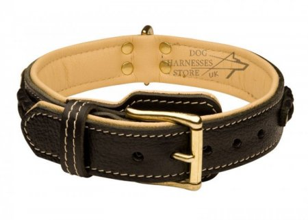Labrador Leather Dog Collar Royal Nappa Lined