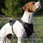 Working Dog Harness for English Pointer, Super Strong Design