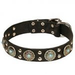 Turquoise Stone Dog Collar Leather and Silver-Like Decor