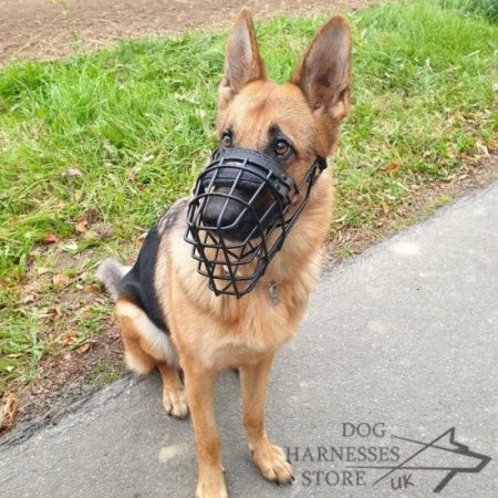 German Shepherd Muzzle Rubber Covered Wire, Best for Winter