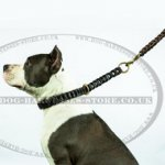 Amstaff Leash, Handmade Braided Leather Dog Lead with Handle