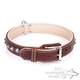 "Handmade Padded Leather Dog Collar ""Cone"" Brown"