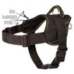 Nylon Dog Harness Multipurpose for Pulling, Tracking, Bestseller