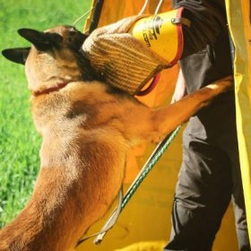 Belgian Malinois Training Advanced Bite Sleeve with Jute Cover