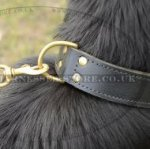Large Leather Dog Collar for Grown-Up German Shepherd