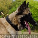 Tervuren Collar, Extra Strong, Wide, Double-Ply, Braided Leather