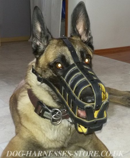 Malinois Muzzle of Royal Design, Soft Nappa Padded Leather