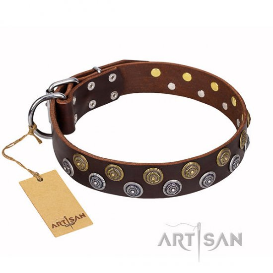 "Brown Leather Dog Collar FDT Artisan ""Strong Shields"" with Studs"