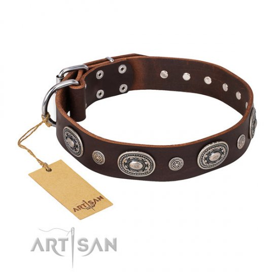 "Brown Leather Dog Collar Adorned, ""Extra Pizzazz"" FDT Artisan"