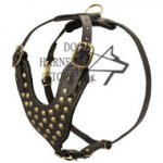 Studded Walking Dog Leather Harness, UK Bestseller in Design!