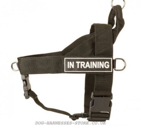 Mastiff Dog Harness of Nylon for All-Weather Multifunctional Use
