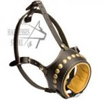 Leather Dog Muzzle, Anti-Bark, Studded and Soft Nappa Padded