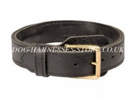 Bestseller! German Shepherd Agitation Collar Leather with Handle