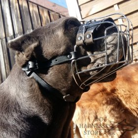 Wire Dog Muzzle UK Universal for Every Breed Walking, Training