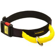 Agitation Dog Collar of Nylon with Handle and Buckle, Adjustable