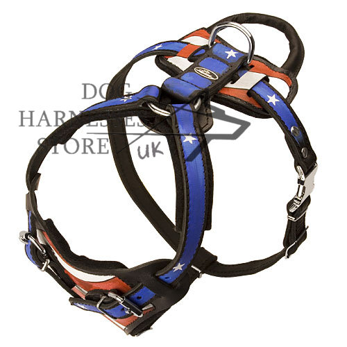 Designer Dog Harness with Handle UK