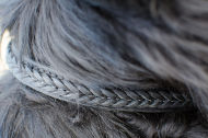 Braided Dog Collar for Newfoundland UK