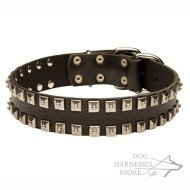 Leather Dog Collar with Square Nickel Studs, Caterpillar Design