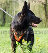 "Designer Dog Harness with ""Flames"" for German Shepherd"