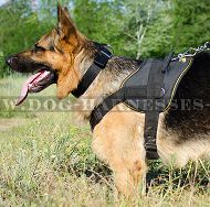 Dog Sport Harness for German Shepherd, Nylon UK