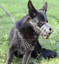 Spiked Dog Harness for German Shepherd, GSD UK