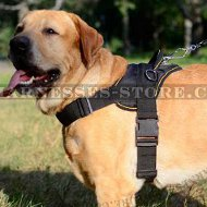 Dog Training Harness Nylon for Golden Retriever, Extra Strong