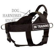 K9 Dog