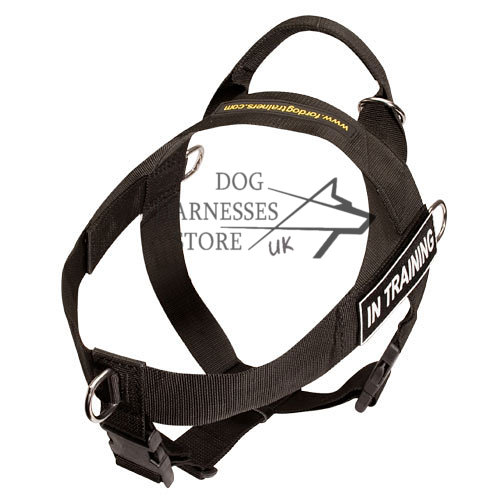 Nylon Dog Harness UK