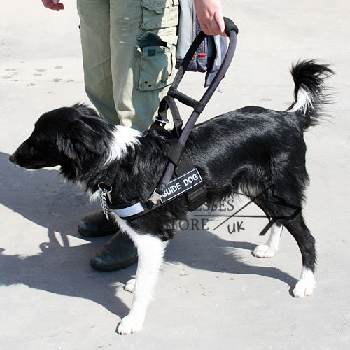nylon guide dog harness for Collie