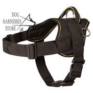 Nylon Multiuse Dog Harness for Tracking and Pulling, Bestseller