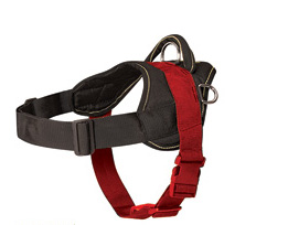 Nylon dog harness - how to measure a dog