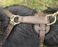 Strong Dog Harness for German Shepherd | Handmade Dog Harness