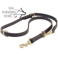 Functional Leather Dog Lead, 3/4 Inch UK