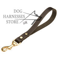 Functional Short Dog Lead with a Handle, UK Bestseller