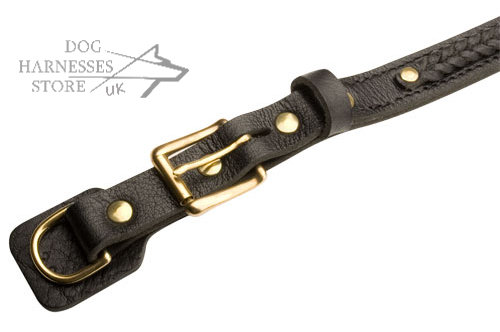 Adjustable dog collar with quick-released buckle