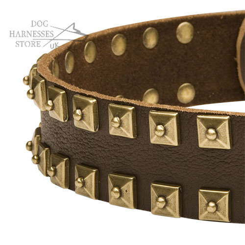 Fashion Dog Collars UK