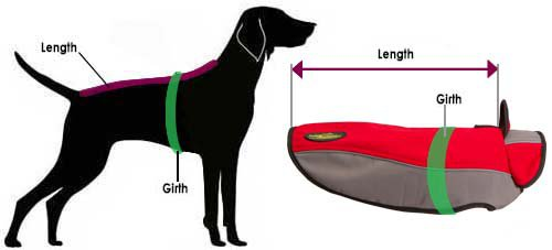 How to Size Dog for Nylon Coat