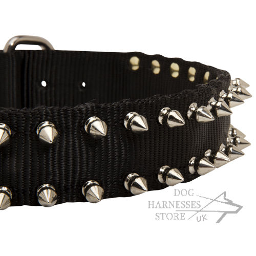 Spiked Dog Collars, Nylon
