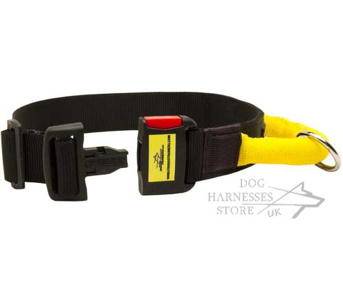 Nylon Dog Collar Handle UK