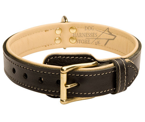 Wide Leather Dog Collar UK